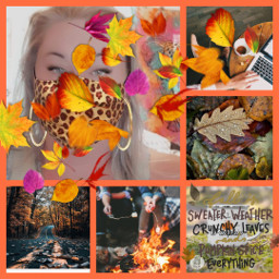 leaves fall autumn cool cold mask campfire crisp air pumpkin pumpkinspice colorful pretty halloween freetoedit ccautumnmoodboard autumnmoodboard