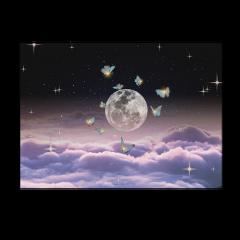 moon luna aesthetic moonaesthetic aestheticmoon cloud clouds aestheticclouds night aestheticnight star stars aestheticstars butterfly aestheticbutterfly tumblr backgroud moonbackground cloudsbackground starsbackground shiny shinybackground tumblrbackground aestheticbackground freetoedit