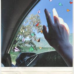 oldphoto airplanes photo paperairplane srccolorfulpaperplanes colorfulpaperplanes freetoedit
