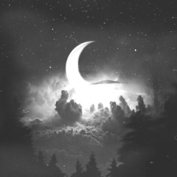 freetoedit replay night sky forest stars fog moon black white