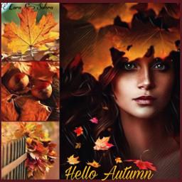 freetoedit tablerodeoto ccautumnmoodboard autumnmoodboard