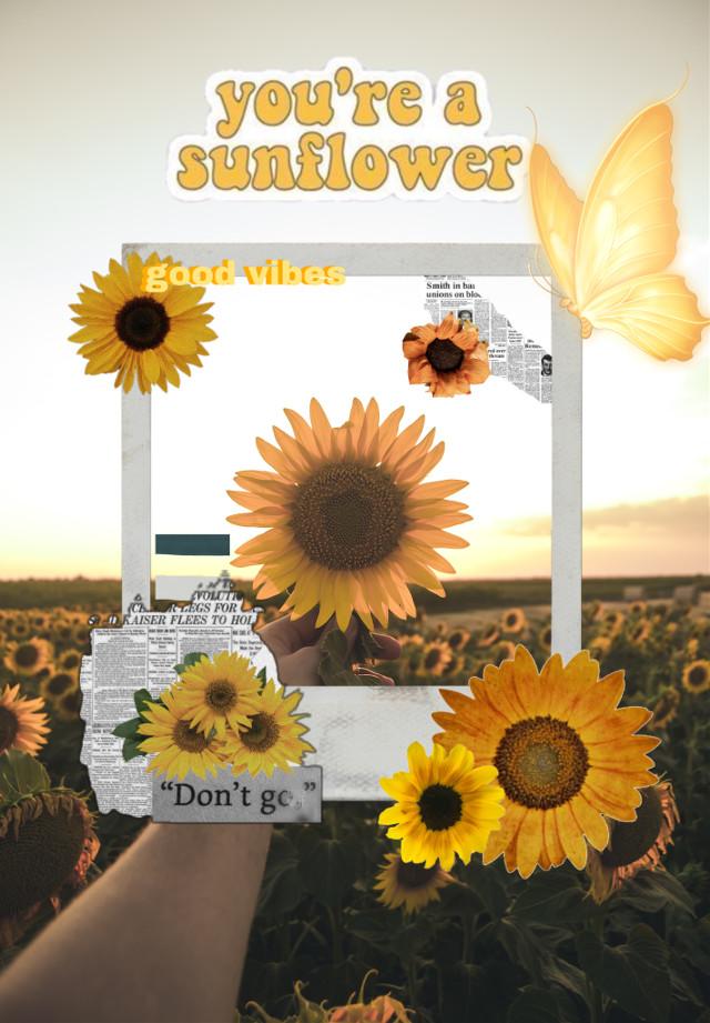 #freetoedit #picsart #sunflower #voteforme
