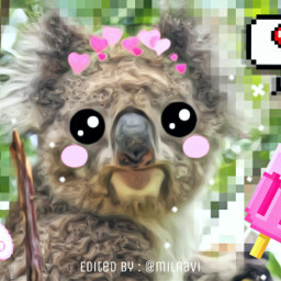 koala pixel cartooneyes cute animallover freetoedit eccartoonifiedanimals cartoonifiedanimals