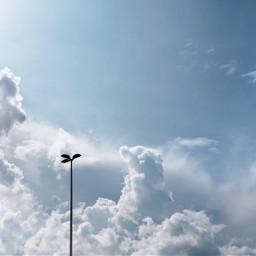 cloudshapes clouds lamppost sky imagine photooftheday todayssky remixme freetoedit