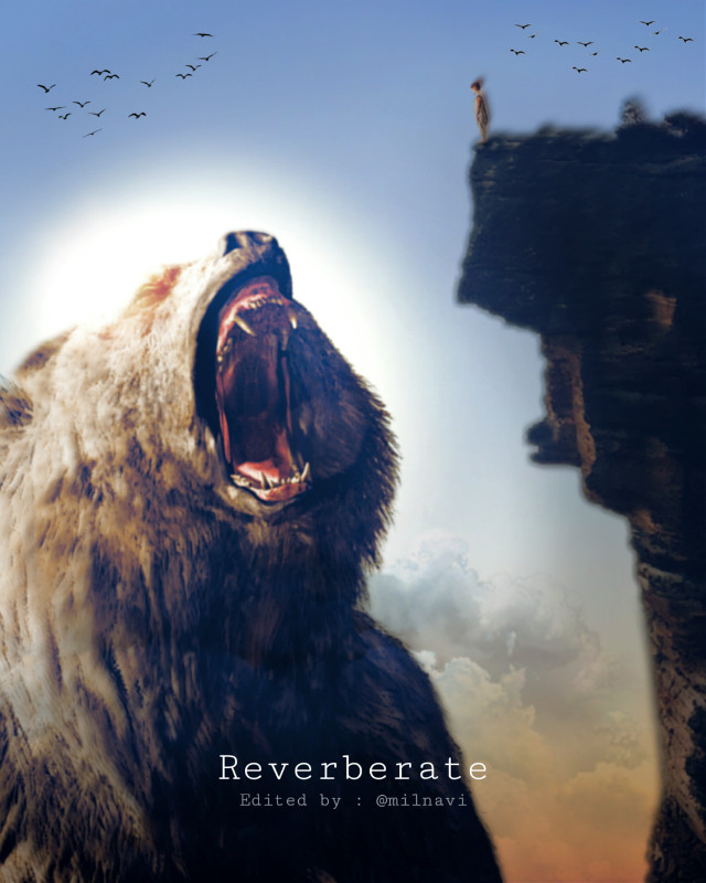 #height #contrast #cliff #girl #bear #roar #echo In this edit, I try to depict a very interesting relationship between the bear and the girl. The girl is standing high on the cliff fearless while the big and mighty bear tries to intimidate her with a proud roar.