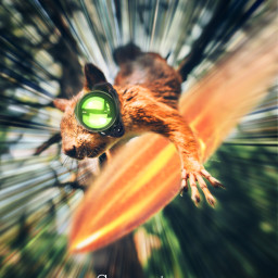squirrel surreal action bullet agent move motion freetoedit irchangtime hangtime