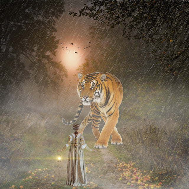 #freetoedit #myedit #madewithpicsart #editedbyme #editedwithpicsart #picsart #nature #landscape #replay #stepbystep #learningpicsart #sunset #tiger
