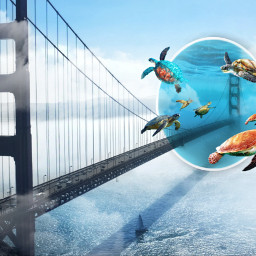 freetoedit turtles sky bridge surreal surreality portal surrealisticgate underwater inspiration stayinspired madewithpicsart