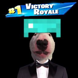 walterdog minecraft fortnitewin victoryroyal tuxedo