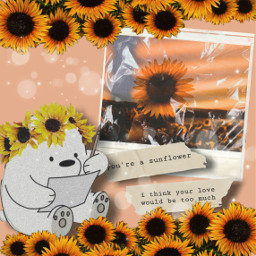 freetoedit sunflower bear cutebear sunflowerphotography ircsunflowerinmyhand