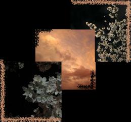 aesthetic aestheticsticker sky dark darkaesthetic aestheticsky photography photo aestheticphotography pink pics картинка небо эстетика фотографии эстетично черный темнота пикчи картинкастикер freetoedit
