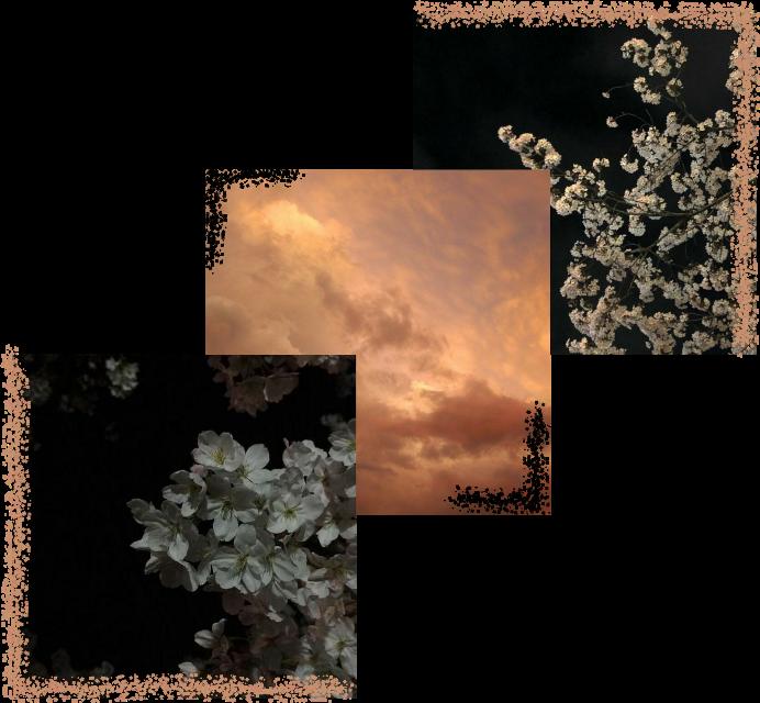 #aesthetic #aestheticsticker #sky #dark #darkaesthetic #aestheticsky #photography #photo #aestheticphotography #pink #pics #картинка #небо #эстетика #фотографии #эстетично #черный #темнота #пикчи #картинкастикер