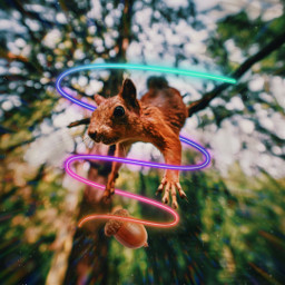 freetoedit colorful acorn squirrel neon neonswirls neonspiral forest aesthetic irchangtime hangtime