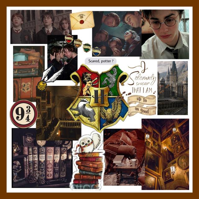 #harrypotter #draco #hermione #ronweasley #cedric