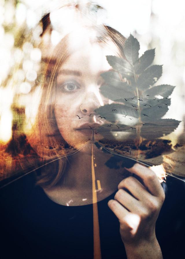 #doubleexposure #doubleface #leaf #road #birds