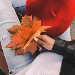 fanartofkai осень freetoedit pcleavesisee leavesisee