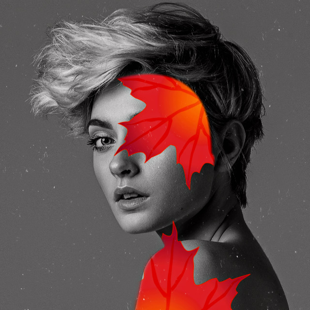 #freetoedit #face #faceart #fall #fallseason #fallleaves #popofcolor #blackandwhite #aisegmentation