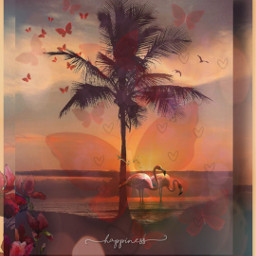 kinora happiness hearts flamingos madewithpicsart picsart lovepicsart shadowframe palmtree sunny warmcolor bokeh butterfly red orange birds flyinghigh loveit myremix freetoedit srcdoodlehearts doodlehearts