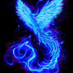 fenix fenice blue blu bird uccello wings ali fantasy fantasia magic magical srcneonwings neonwings