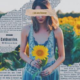 sunflower newspaperedit freetoedit