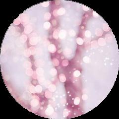 pastelpink circlebackground pink aesthetic background freetoedit