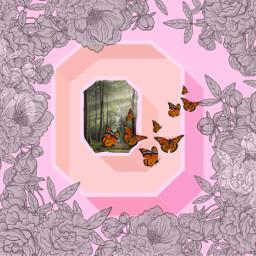 butterfly ecartisticalphabet artisticalphabet freetoedit