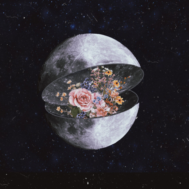 #freetoedit #moon #luna #galaxy #galaxia #tumblr #flowers #flores