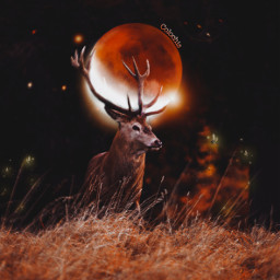 manipulation surrealism creative madewithpicsart amazing moon colochis89 happy freetoedit colochis89