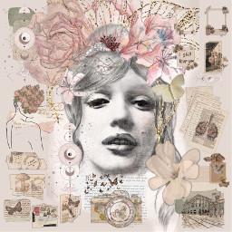 collage marilynmonroe