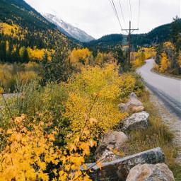 freetoedit beautiful colorado mountains yellow nature interesting photography