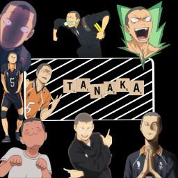 freetoedit anime haikyuuedits haikyuu tanaka