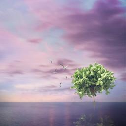 freetoedit myedit minimalism creative clouds