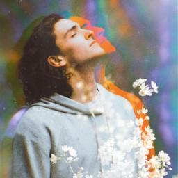 freetoedit glitch flowers sun sunlight