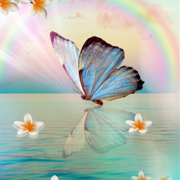 freetoedit butterfly mastershoutout madewithpicsart flowers aesthetic reflection makeawesome heypicsart rainbow araceliss