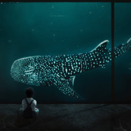 ocean sea whale lighteffects bluebackground aquarium water blue fish giantfish dreams fantasy