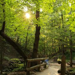 freetoedit nature seven_bridges