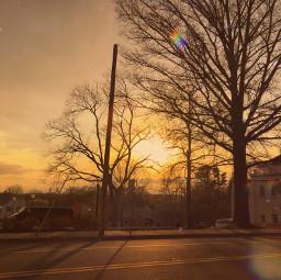 summer sunset sun town trees art nature photography sky golden goldenhour light lightleak challenge freetoedit remixit smalltown road pcgoldenhour