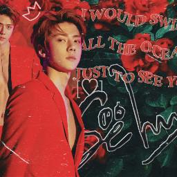 sehun sehunexo oohsehun ohsehun ohsehunexo exosehun freetoedit wallpaper desktopwallpaper red redaesthetic aesthetic rose love kpopexo exol kpop