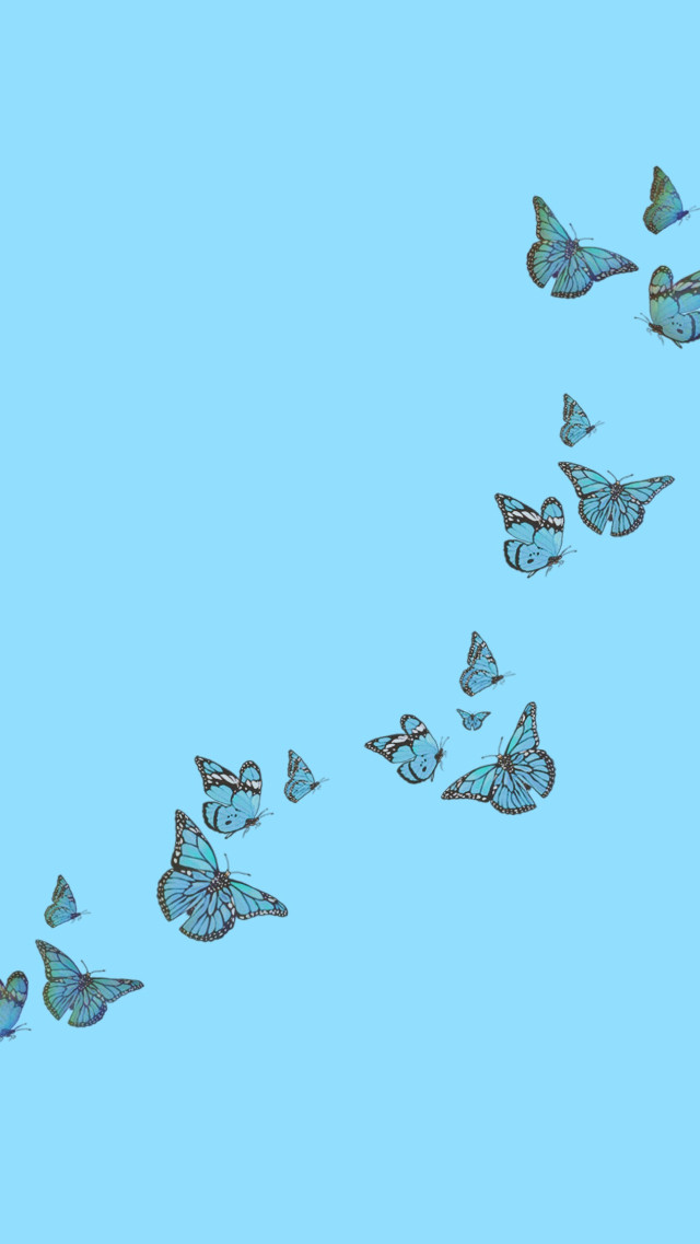 #freetoedit #blue #background #backgrounds #butterfly #butterflies #bluebutterfly #bluebutterflyedits #bluebutterflies #wallpaper #wallpapers #simple #cute #trending #trendy #trend #aesthetic #artistic #edited #emotions #edit #interesting #onedirection #sticker #happy