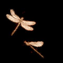 dragonfly vintage vintagedragonfly yellow orange aesthetic vintageaesthetic vibes mood trending trendy indie indieaesthetic 70s 70saesthetic freetoedit