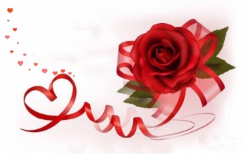 #freetoedit #rose #red