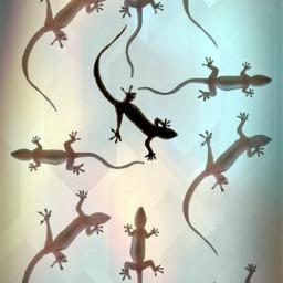 geckos picsart madewithpixlr elvyrajones clownsinnersaint