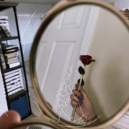 aesthetic aestheticedit rose aestheticrose roseedit mirror mirroredit aestheticmirror photography
