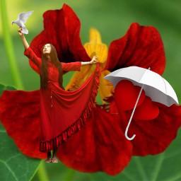 photo flower reddress bird umbrella hearts red surreal fantasy photomanipulation