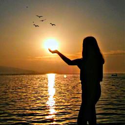 sunny sea freetoedit pcgoldenhour goldenhour