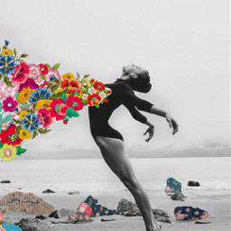 pallete dancer sea sky black white flowers font words feelings rock rocks beach freedom free fly love missyou colors colorfull edit myedit hopeyoulikeit