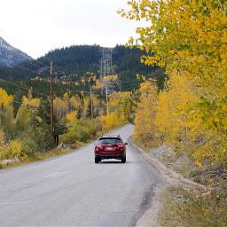 colorado beautiful nature yellow interesting freetoedit