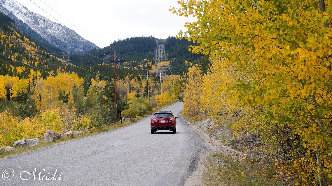 Still just posting landscape photos. Show me your remixes! #colorado #beautiful #nature #yellow #interesting #photography #mountains #road #freetoedit