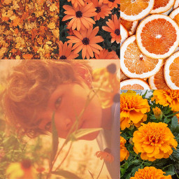 freetoedit taehyung v bts orange aesthetic tumblr collage kpop wallpaper backround likemesoilikeu ccorangeaesthetic orangeaesthetic
