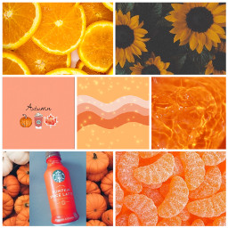 orange insparation ccorangeaesthetic orangeaesthetic freetoedit